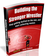 Building the Stronger Wrestler Book